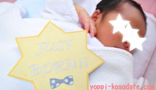 月齢ステッカーの作り方♡100均グッズとwordで手作りできる赤ちゃんの記念写真
